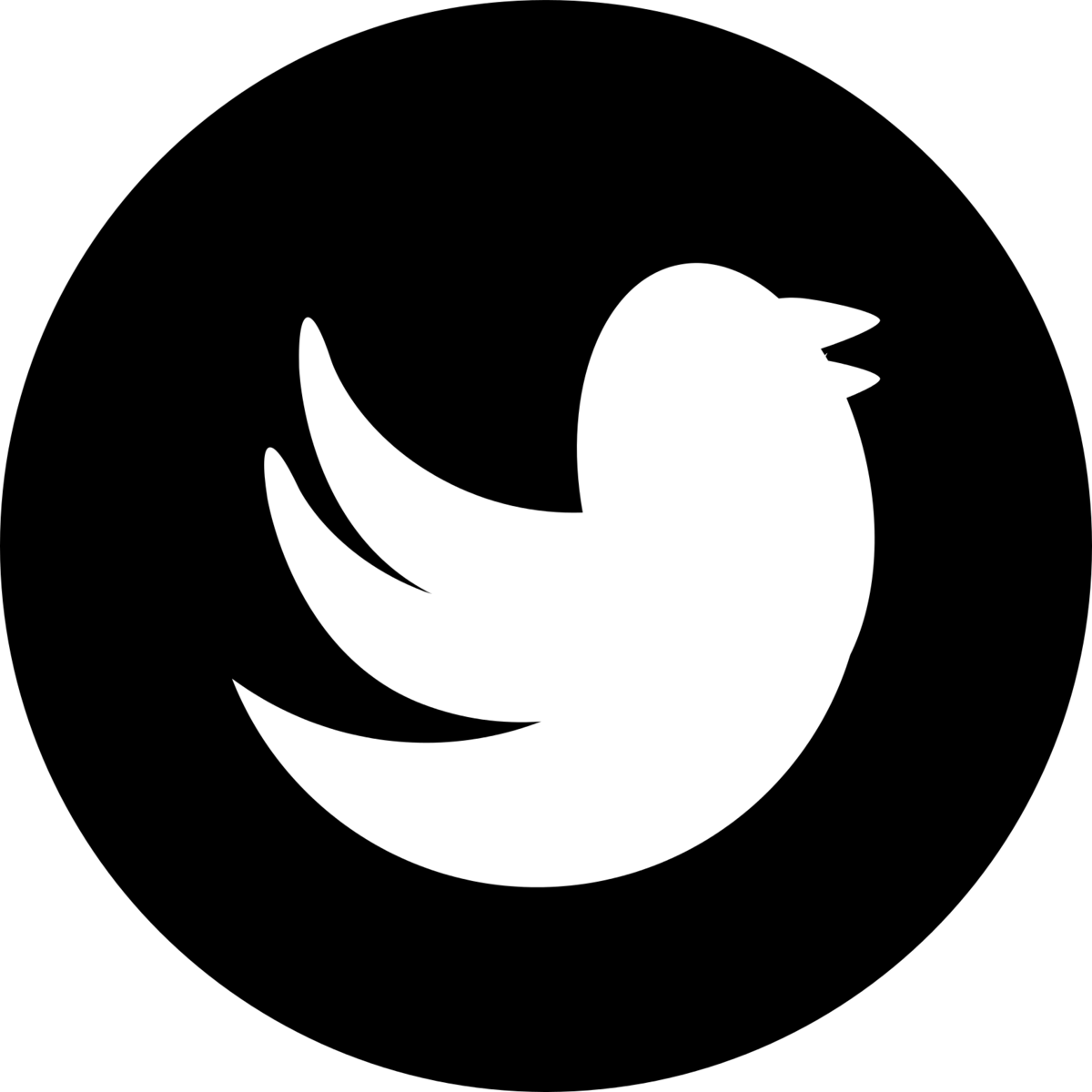 Image result for twitter logo black